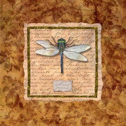 dragonfly_flat72