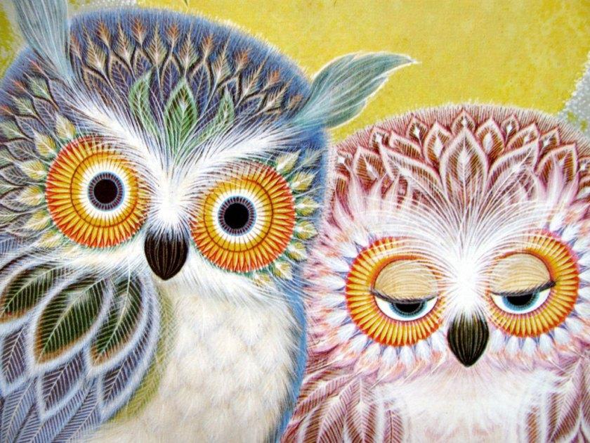 owl_me