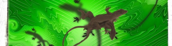 cropped-gecko-copy_1.jpg