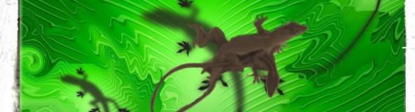 cropped-gecko-copy_1.jpg