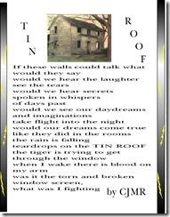 Tin Roof 4 16 02