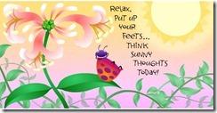Ladybug_Relax