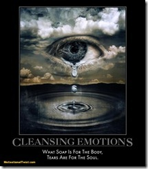 cleansing-emotions-emotions-windows-tears-heart-rerun-motivational-1289691760