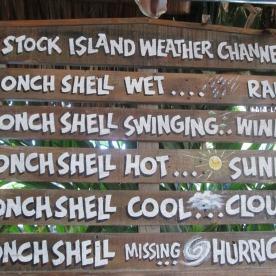 Weather Report © Cynthia Martz