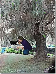 BeFunky_Underpainting_Tranquil_Tree.jpg