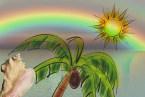 misty rainbow_1