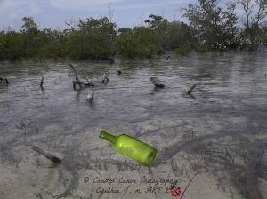 Lagoon1_Sig_Bottle.jpg