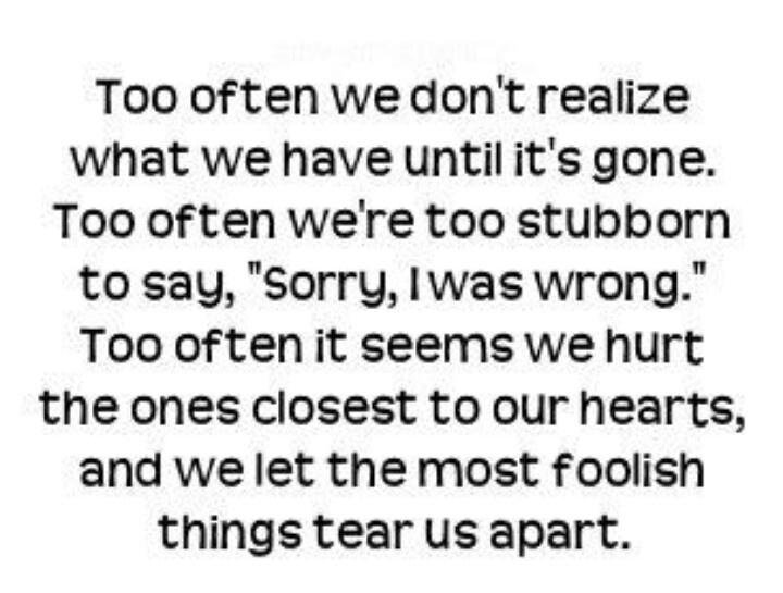 Stubborn_Sorry