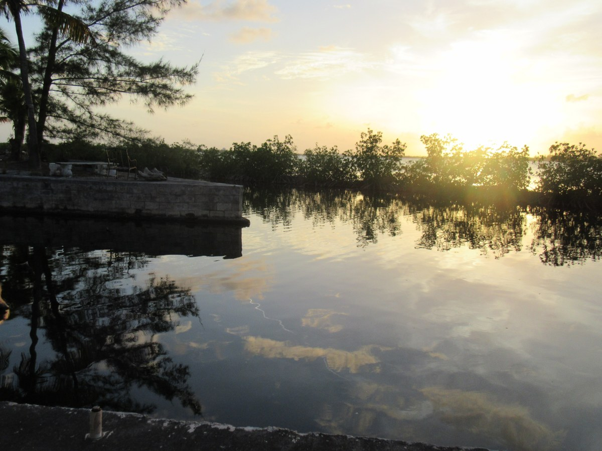 BunnyTime Sunsets andZen