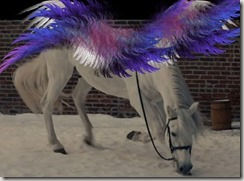 Rainbow_Wings_Horse