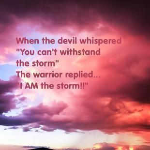 TheWarriorStorm